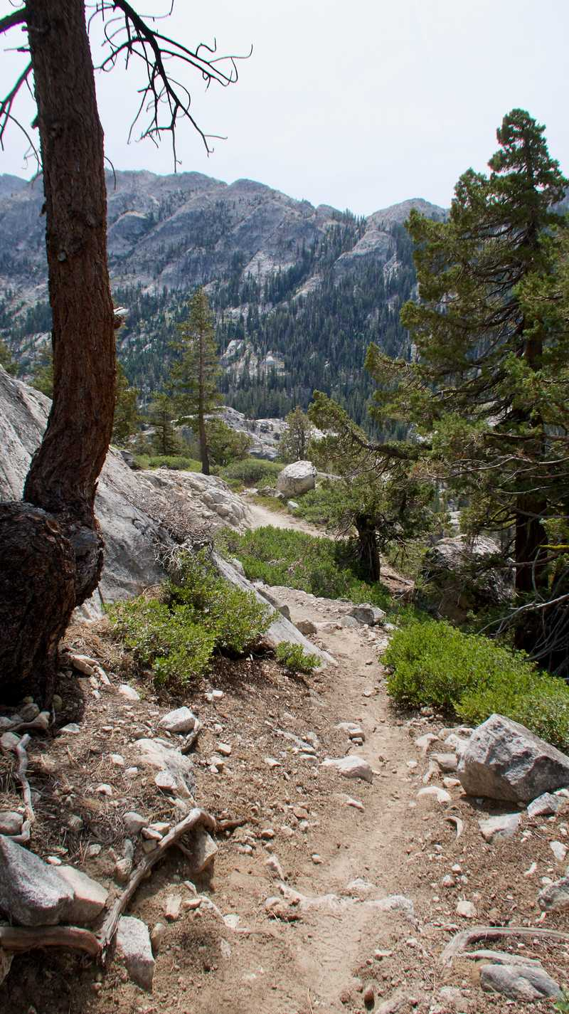 Descending Macomb Ridge in Yosemite