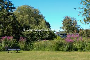 Landscape shot in the Hampshire Neighbourhood