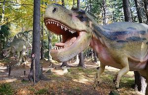 Atrakcja Dinopark. Pod Smerkami - Szklarska Poręba   Domki, Pokoje, Nocleg