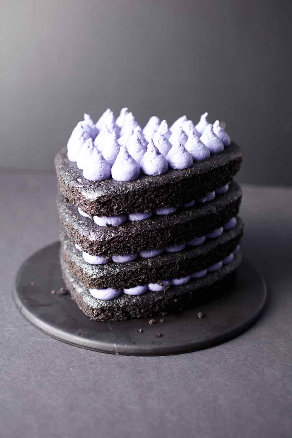 Vegan Chocolate Blackberry Cake
