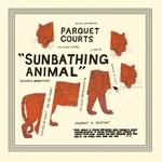 Parquet Courts 'Sunbathing Animal'