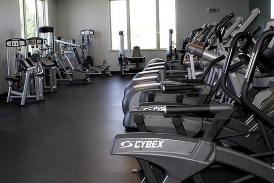 Elliptical cardio equipment including Cybex brand