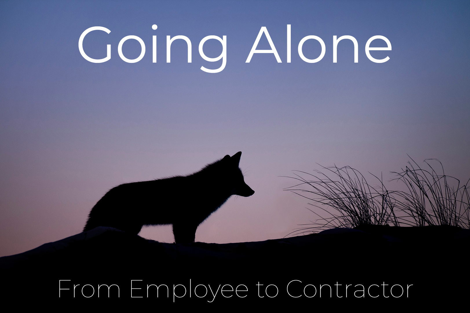 From Employee To Contractor - How I did it cover image