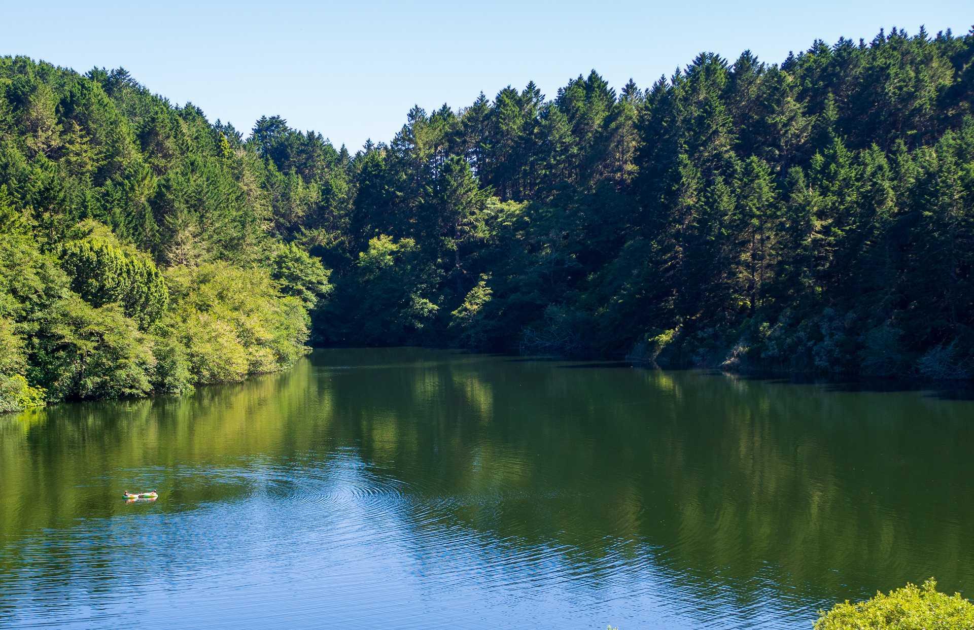 California_Lake.jpg