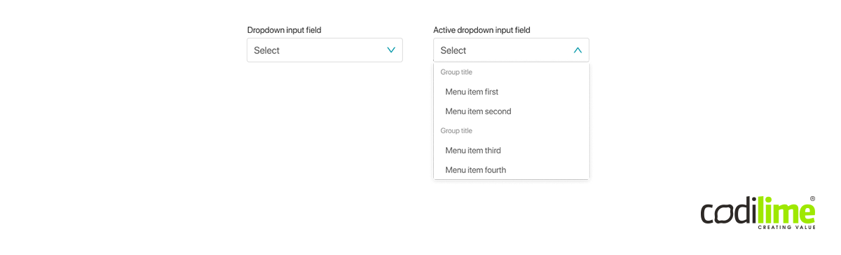 Input field with a dropdown list