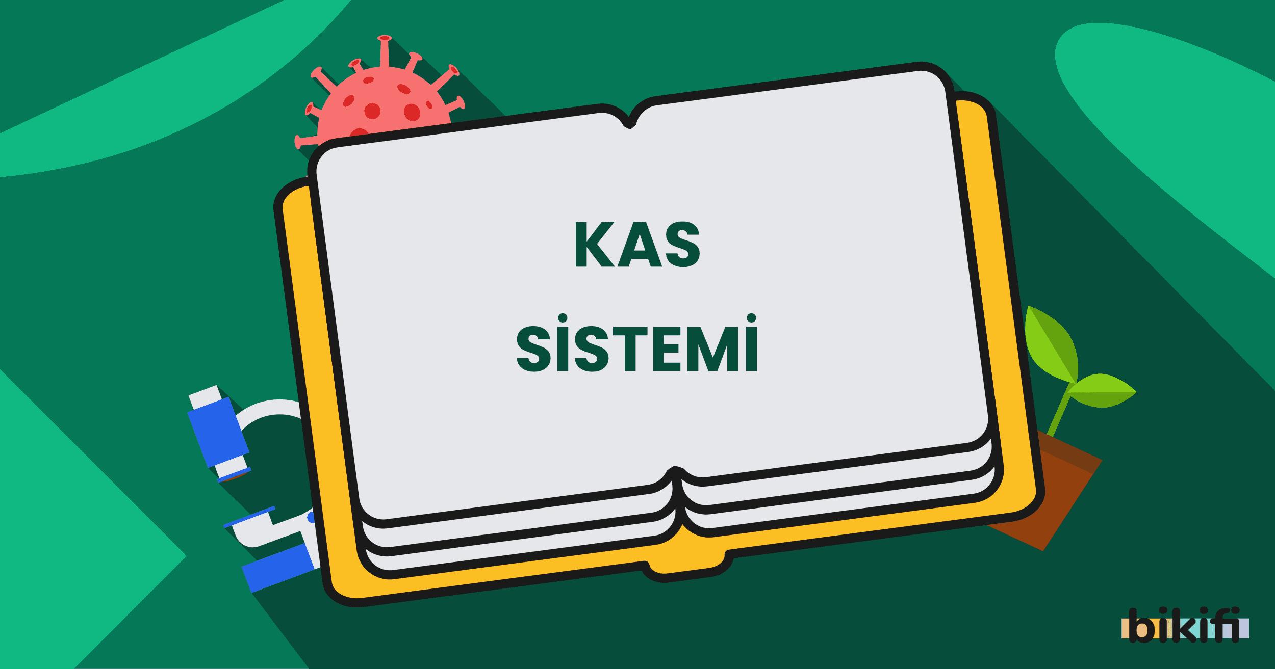 Kas Sistemi