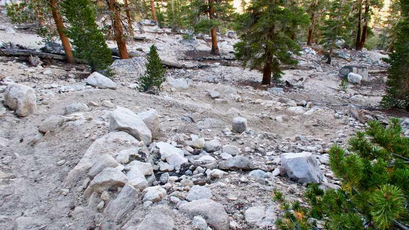Switchbacks to Whitney Creek