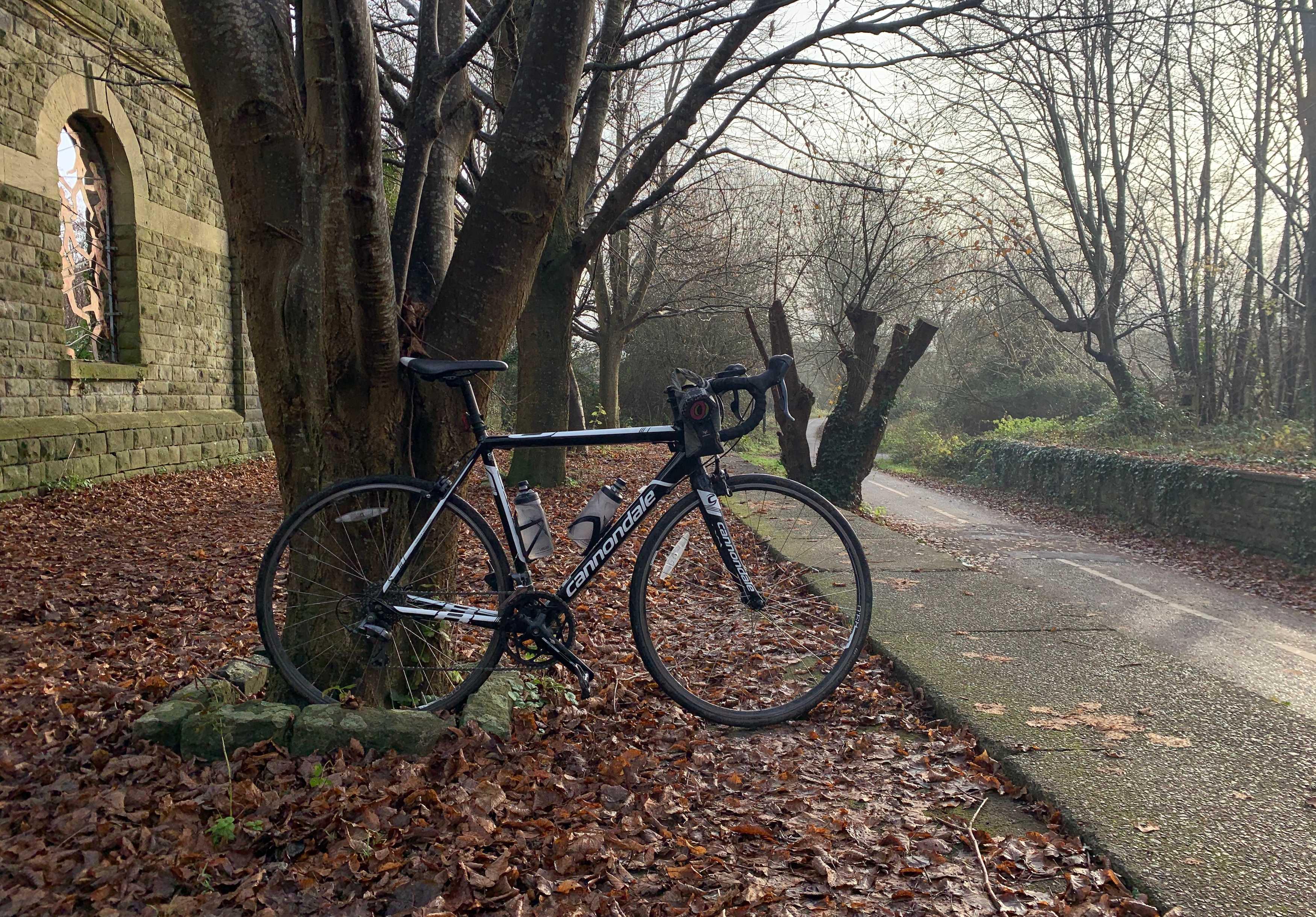 N-1 Bikes for Reforestation