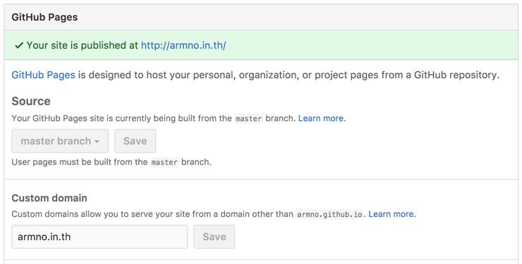 Custom domain settings ของ repo