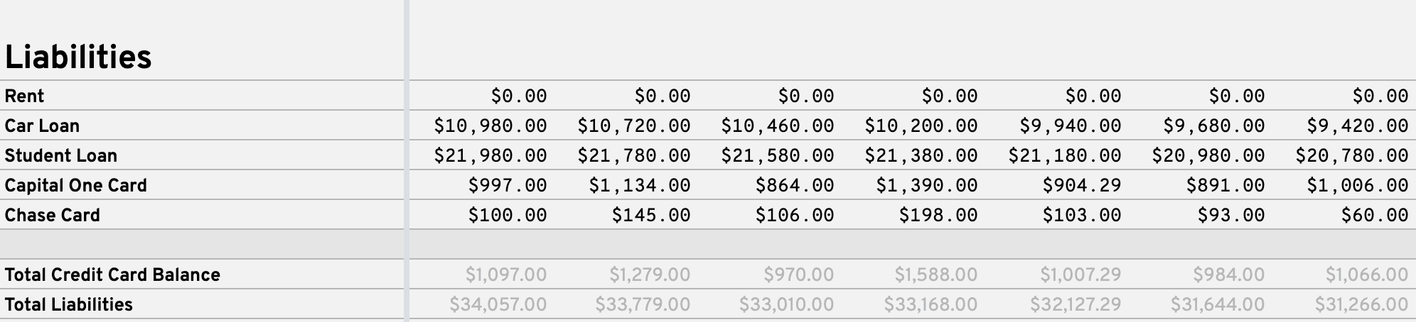 Example of the Liabilities section with sample data on the Balance Sheet tab.