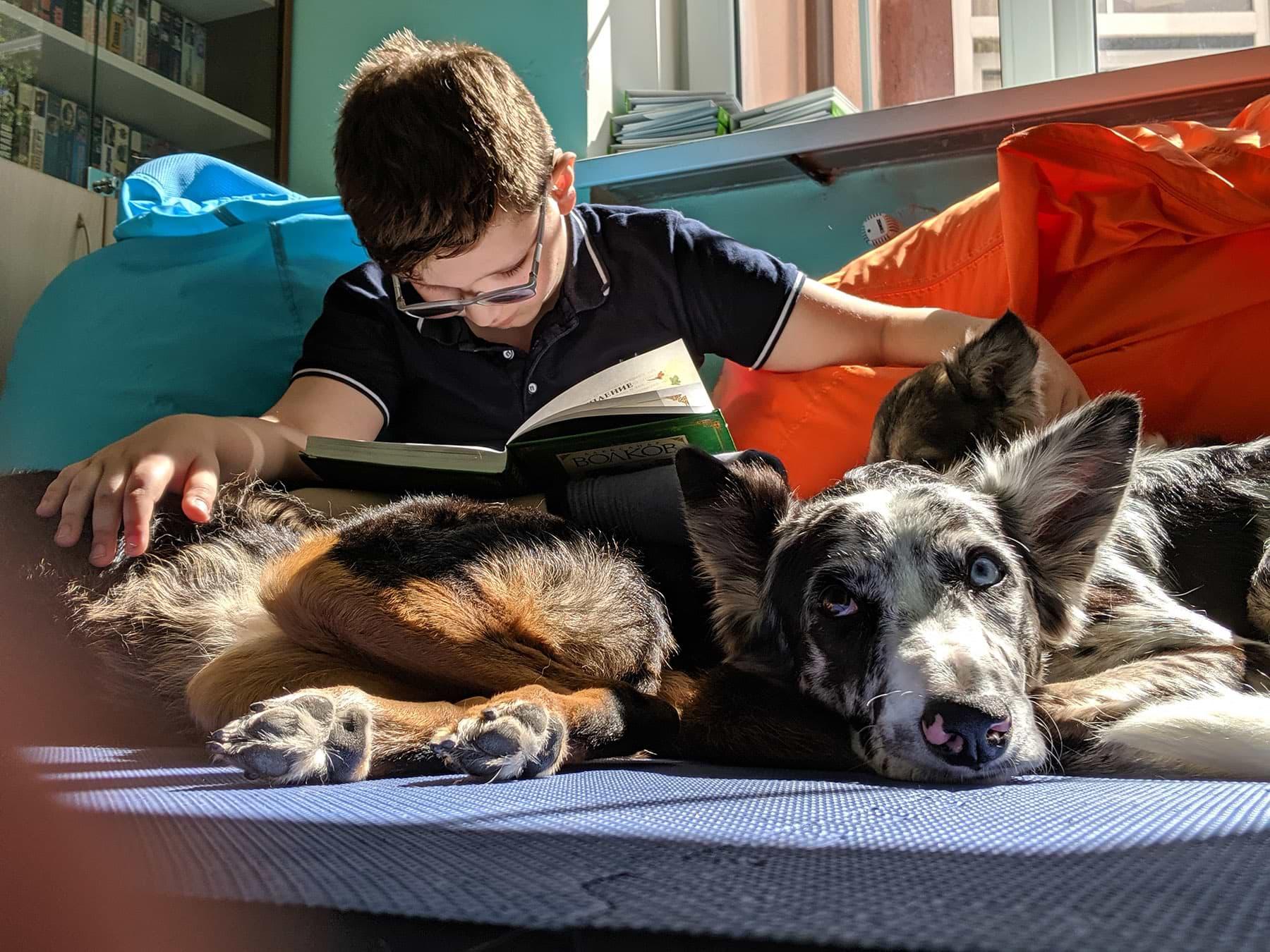 Фото: Bookmate Journal, Калининград