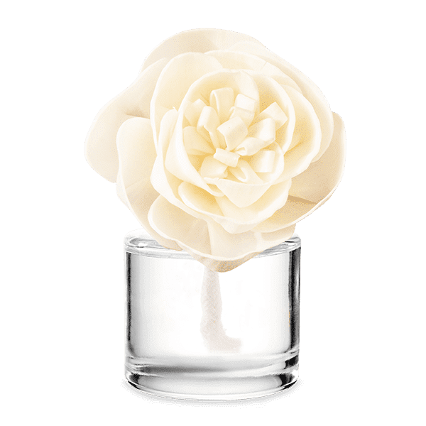 Iridescent Pearl – Buttercup Belle Fragrance Flower