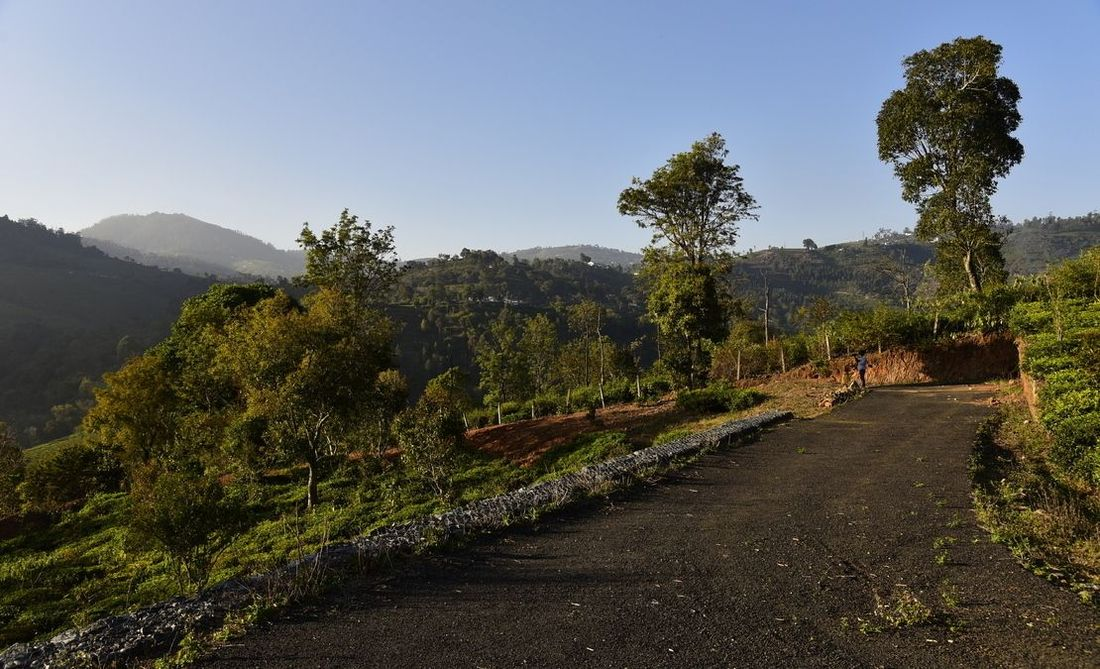 Bitumen topped road at Vista Chiaro