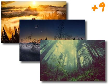 Foggy Forest theme pack