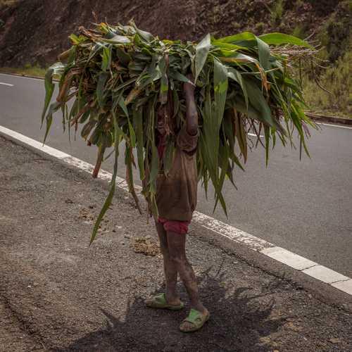 Roadside Child