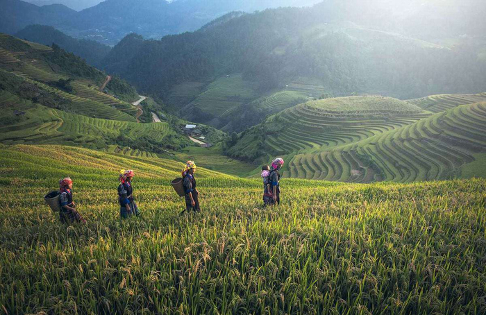 Lessons on Expat Life from Saigon, Bangkok and Cape Town