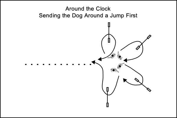 Sending the dog over jumps arranged around the clock