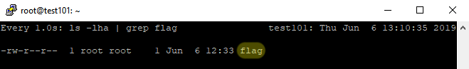 flag file is created on the target server