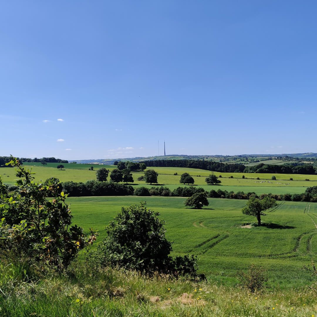 View over Yorkshire Sculpture Park