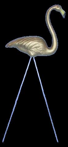 Gold Flamingo photo