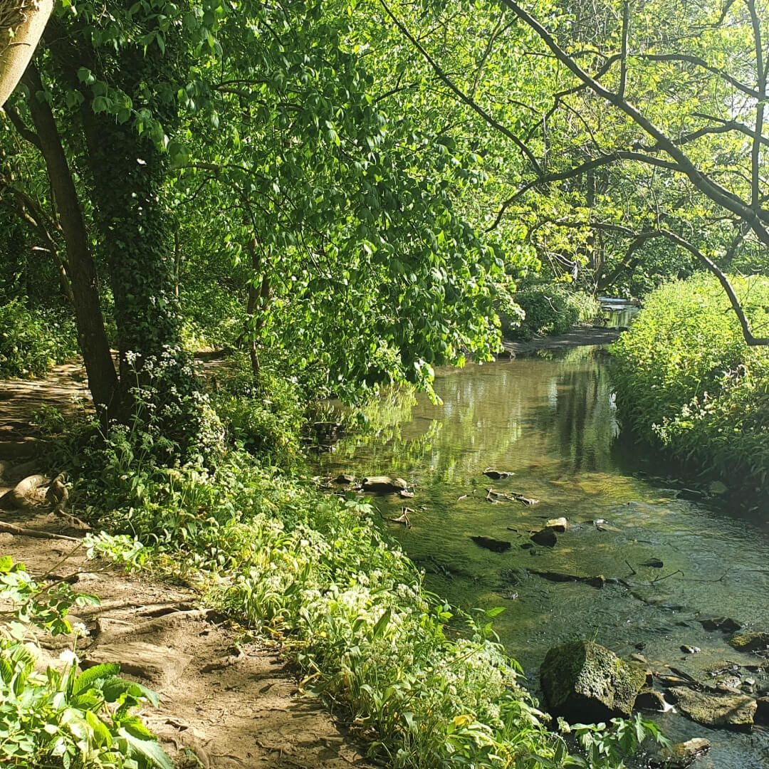 Post Hill Nature Reserve path by stream