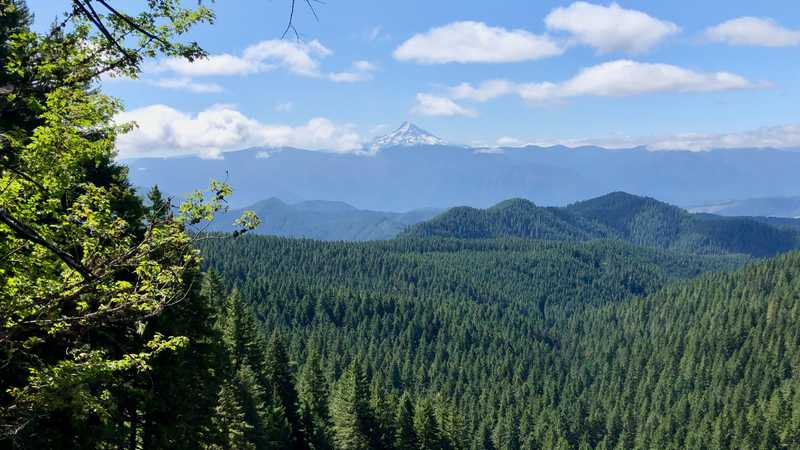 A view of Mt. Hood and the Columbia River Gorge