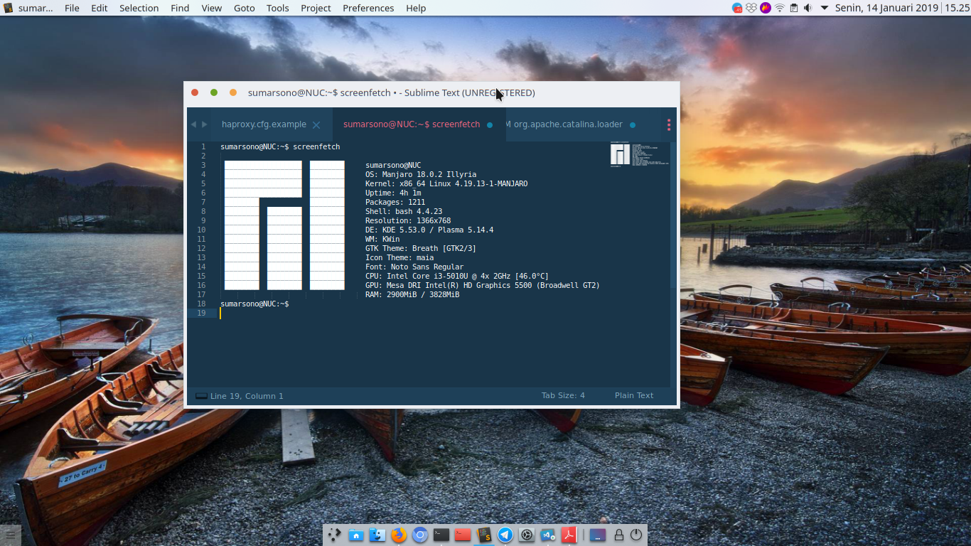 My Current Manjaro Look