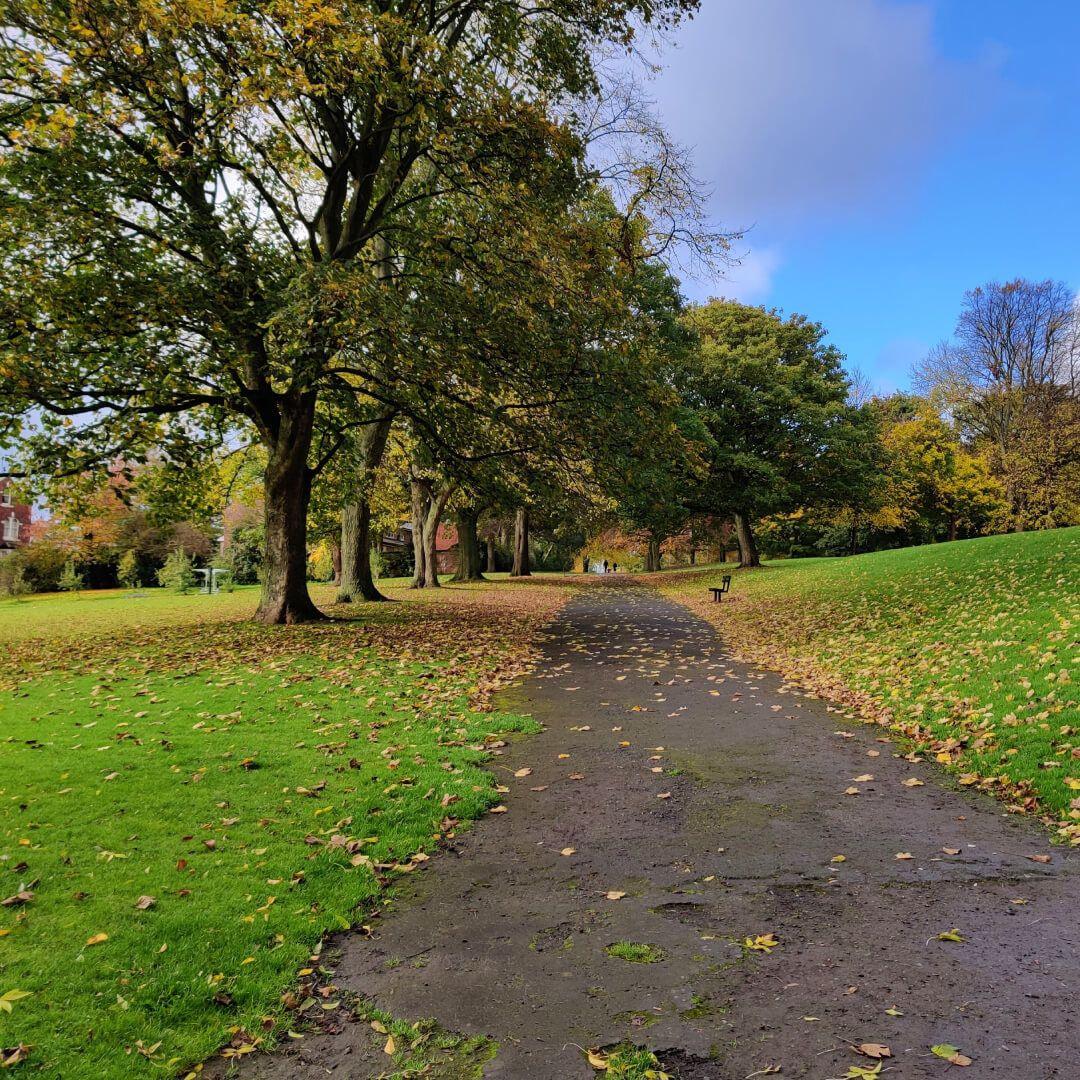 Burley Park footpath