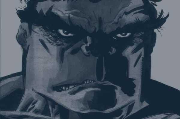 capa da HQ Hulk Cinza de Jeph Loeb e Tim Sale