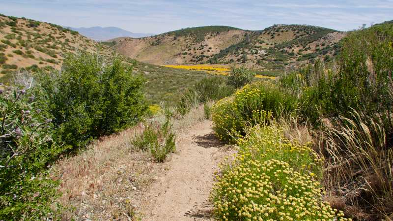 Lower trail heading to Mojave Desert