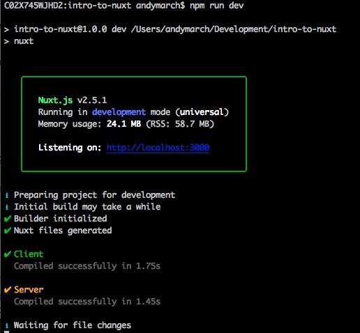 Nuxt running dev server