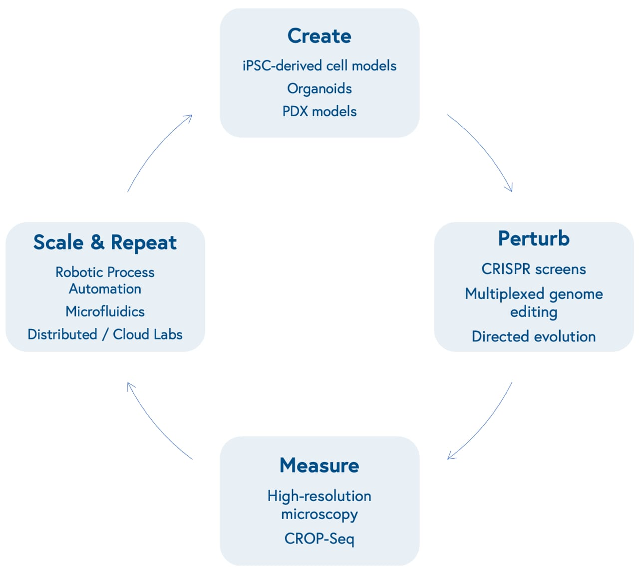 Info graphic displaying the cycle of Create, Perturb, Measure, and Scale & Repeat