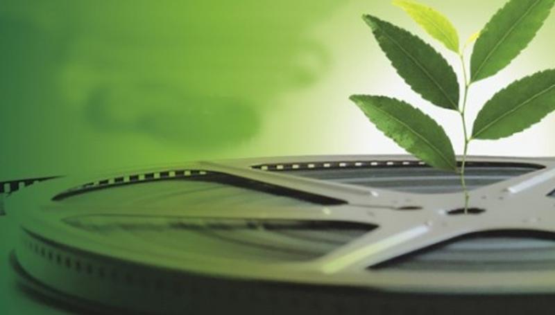 Imagem em destaque para o artigo: 5 documentários sobre o meio ambiente que você precisa ver!