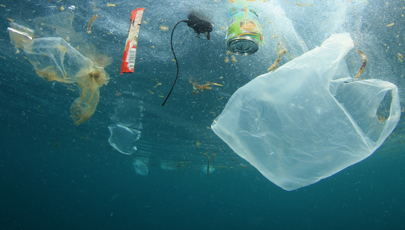 Imagem em destaque para o artigo: É possível viver em um mundo totalmente sem plástico?