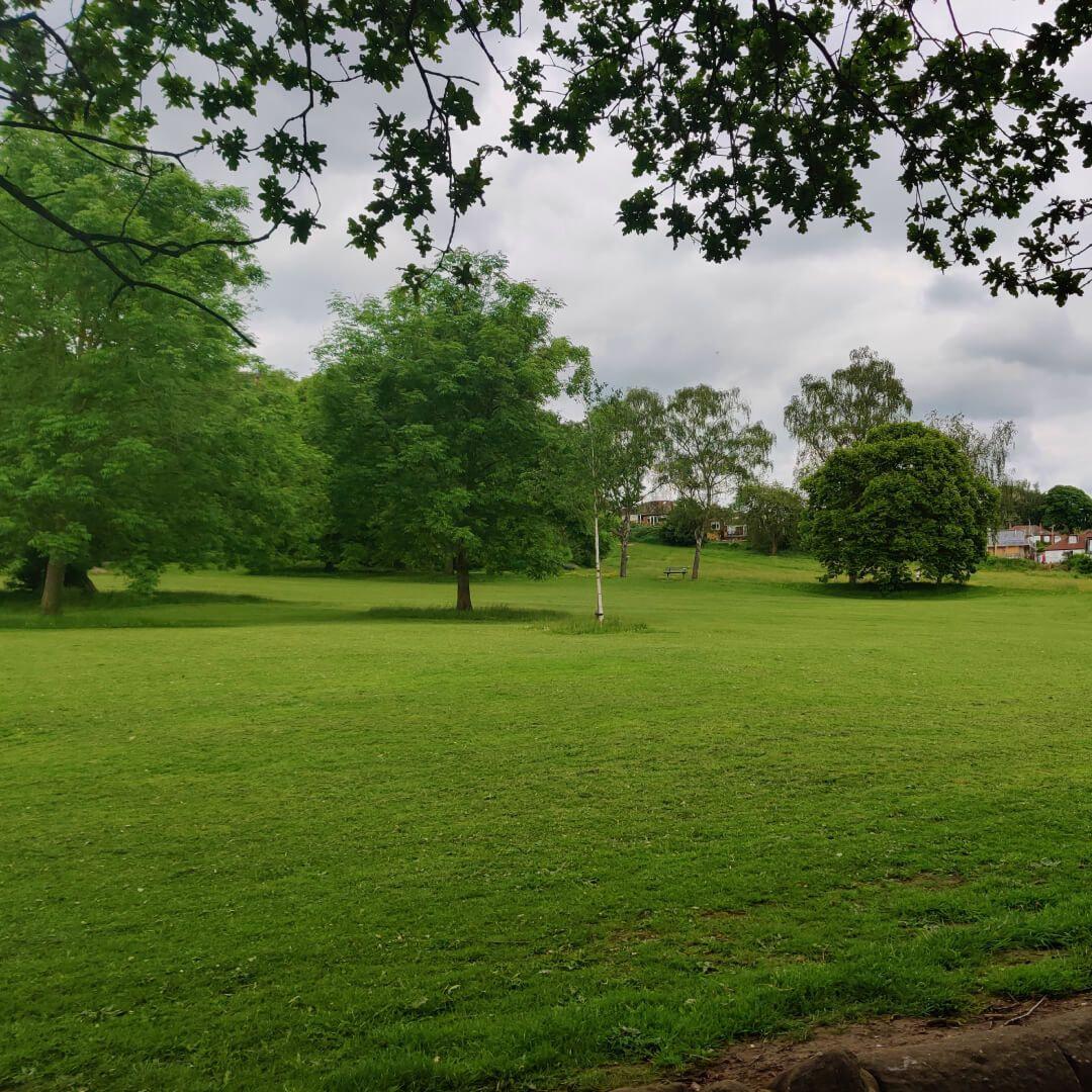 Meanwood Park field