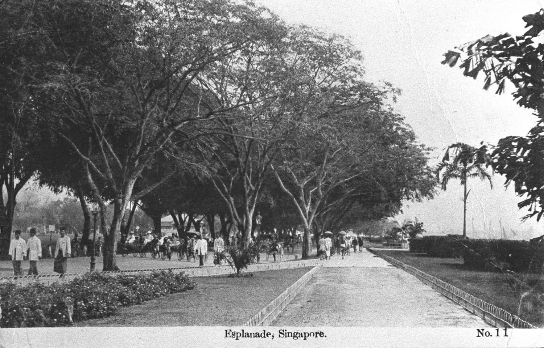 The Esplanade, 1920s