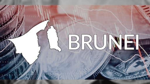 Financial services, banking and payment systems in Brunei