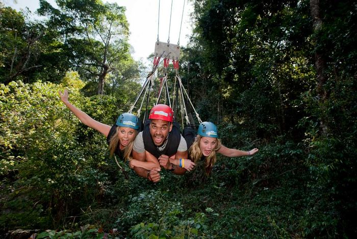 Bungy & Jungle Swing