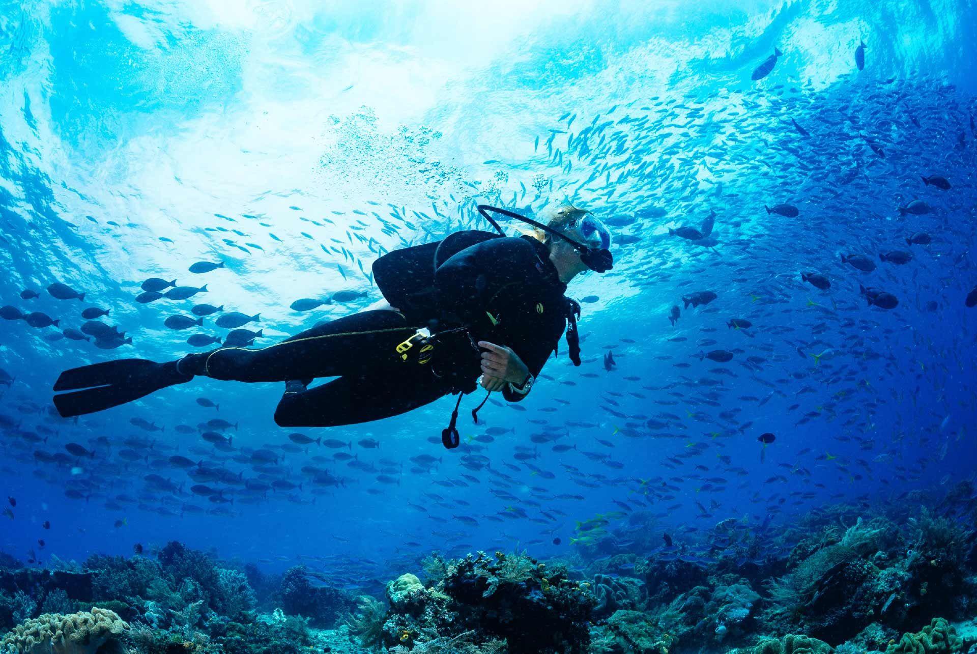 Kornati  Scuba Diving