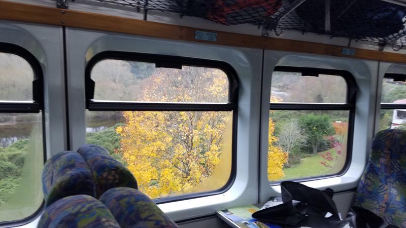 It is Fall outside the train windows.