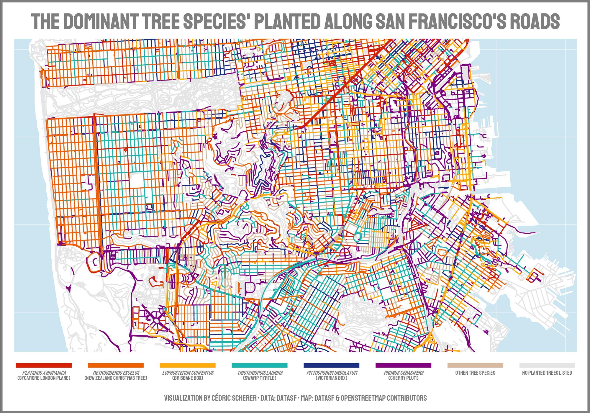 Tree Species in San Francisco