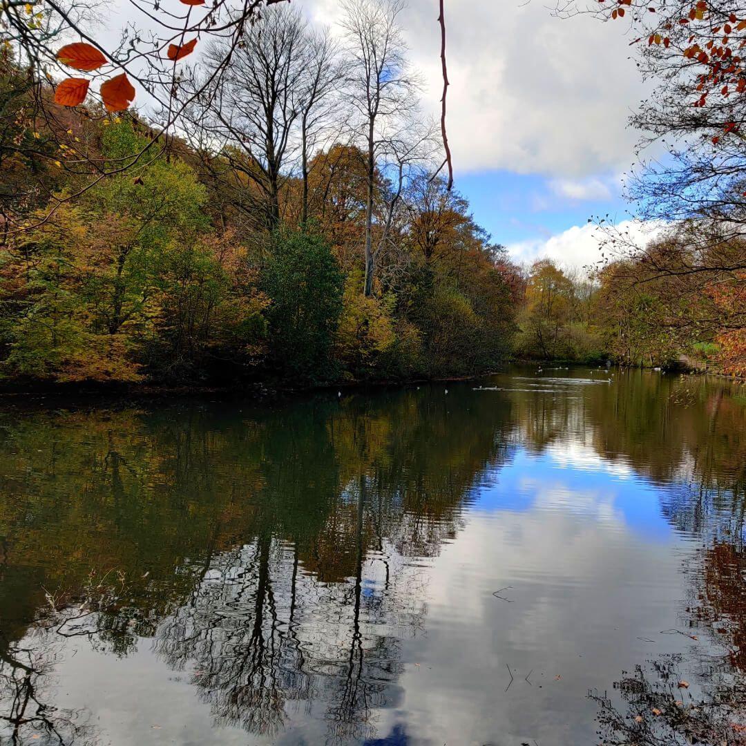 Gledhow Valley Woods lake