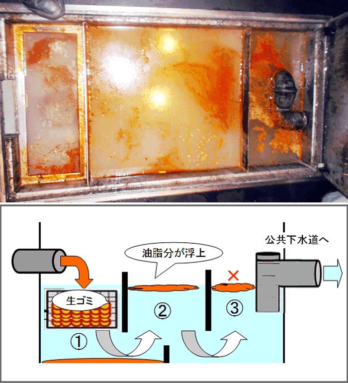 新東京サービス|害虫駆除・消防点検例