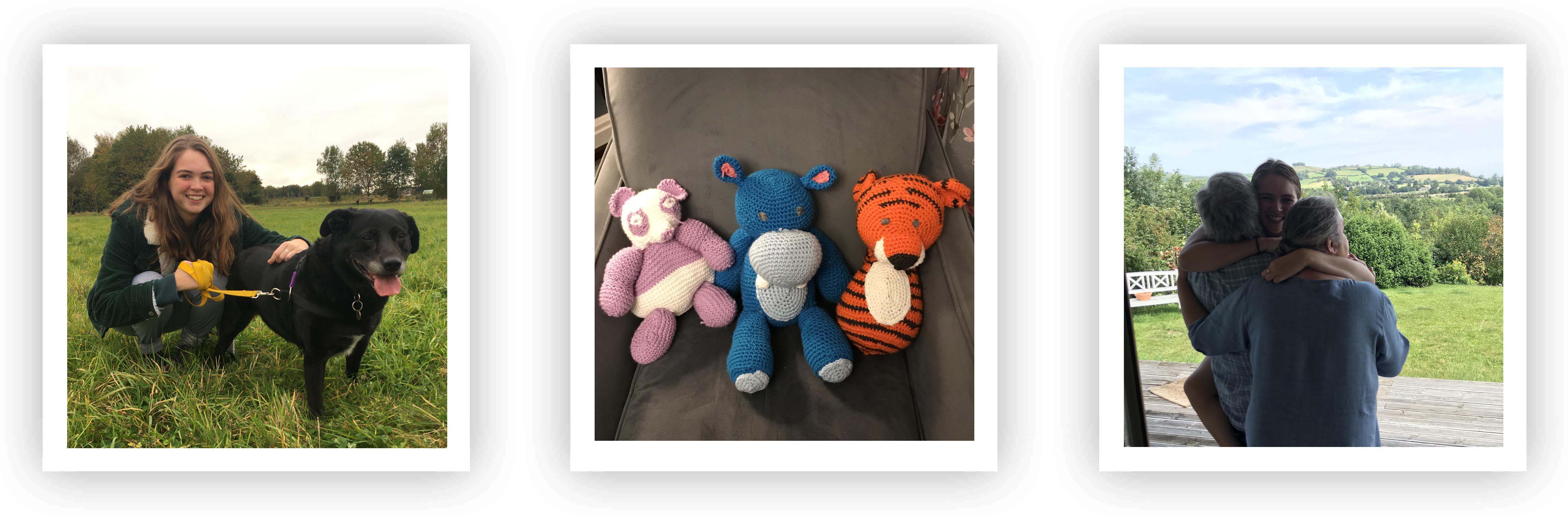 Rachel's teddybears