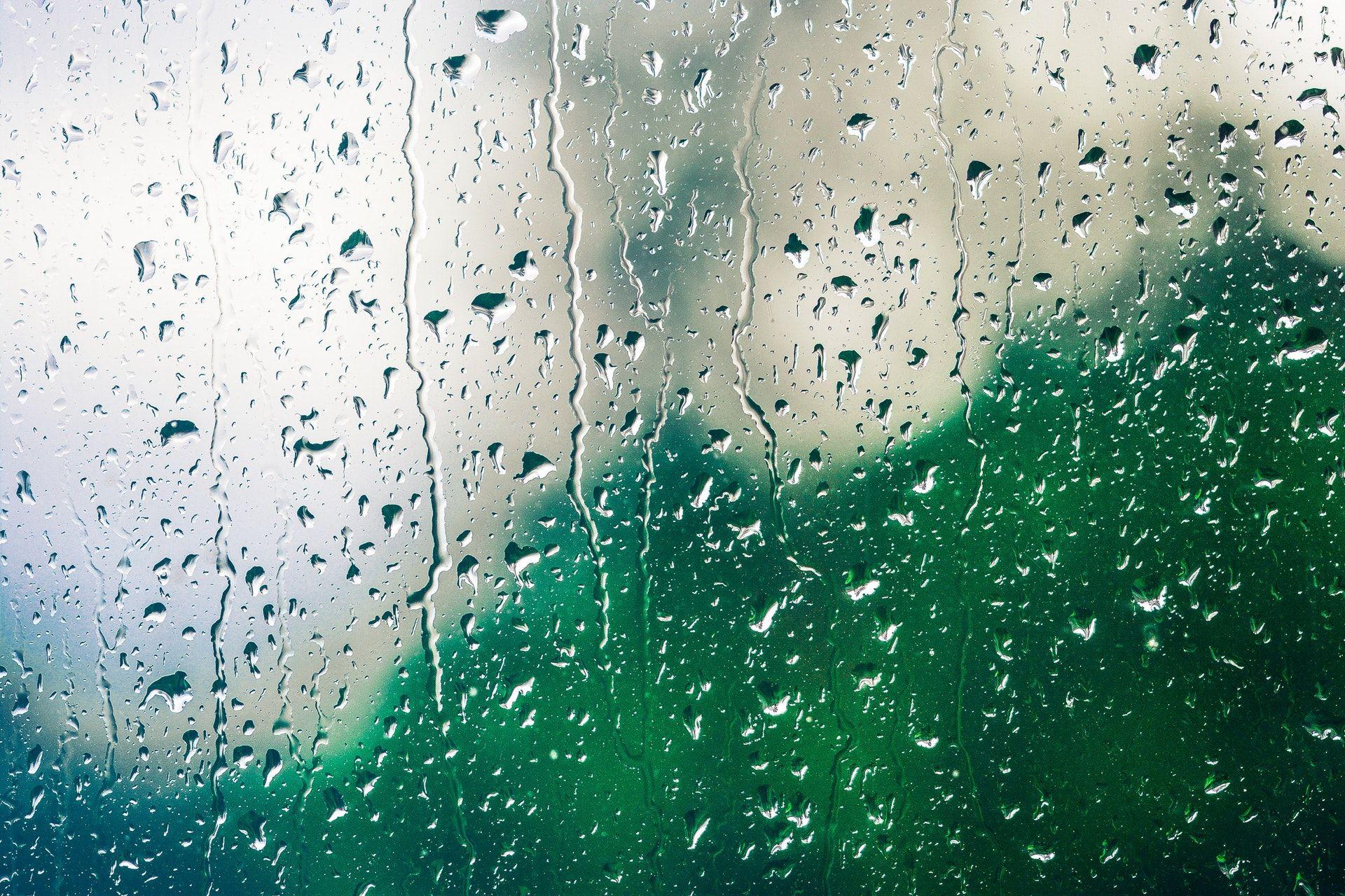 Rain Sounds | Pluvioniverse