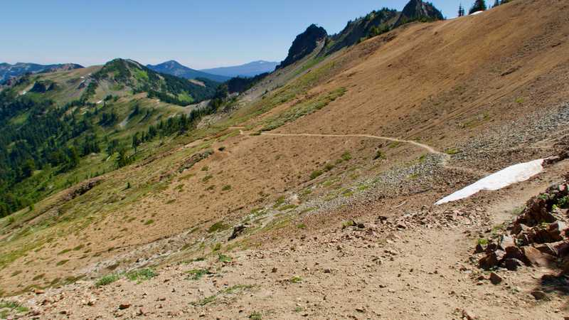 Barren trail past Cispus Pass