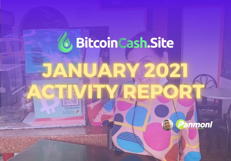 BitcoinCash.Site Jan 2021 Activity Report