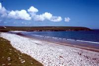 Tresta Beach, Fetlar