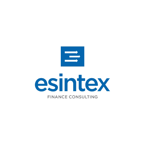 esintext finance consulting