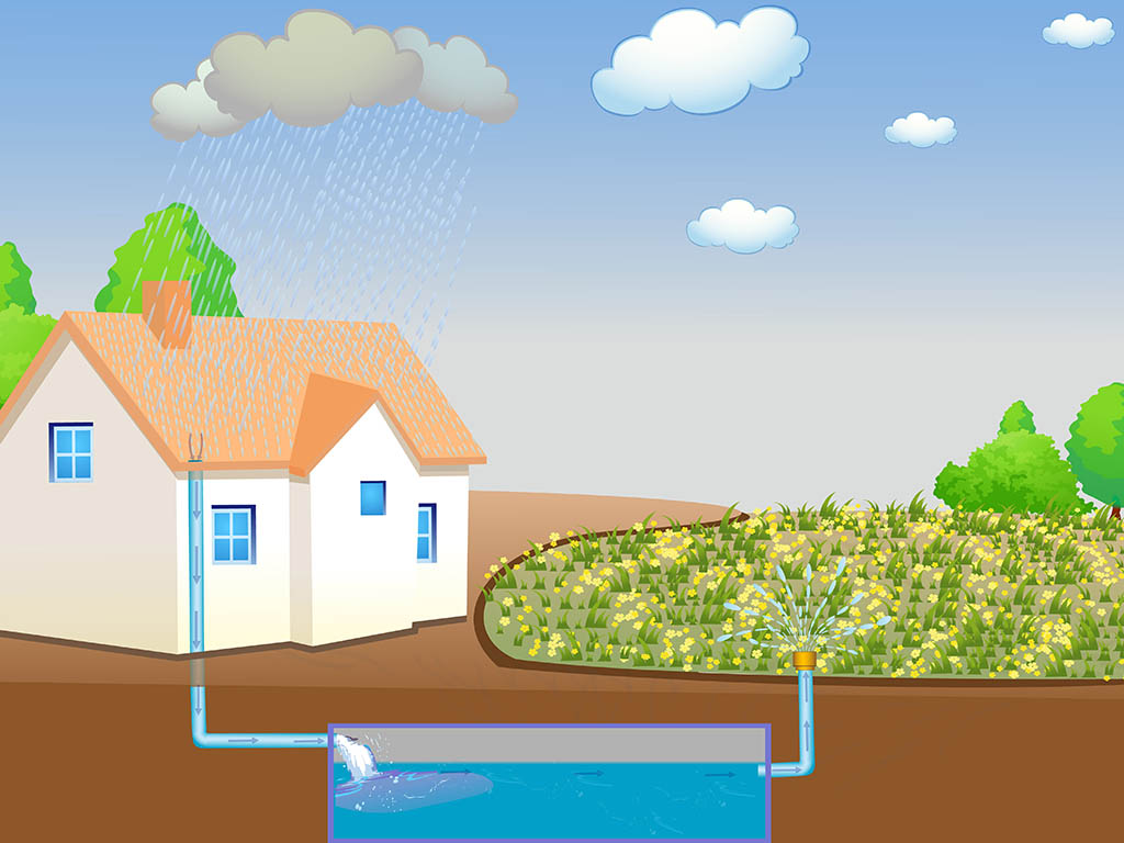 What is Water Harvesting?